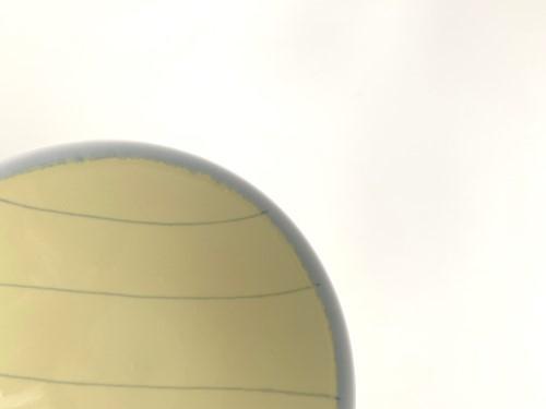 平茶わん特大YM-1(黄色1)