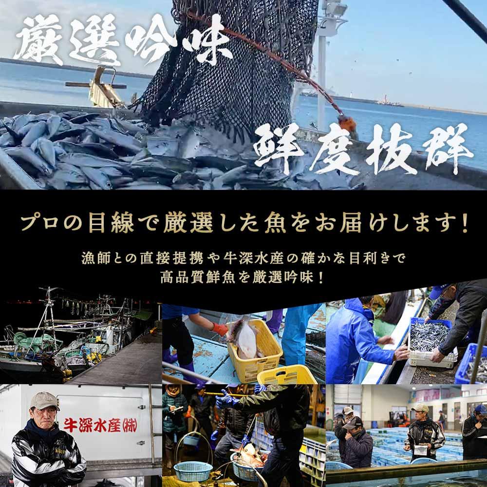 [定期購入商品] 海の感動 定期便  牛深漁港直送
