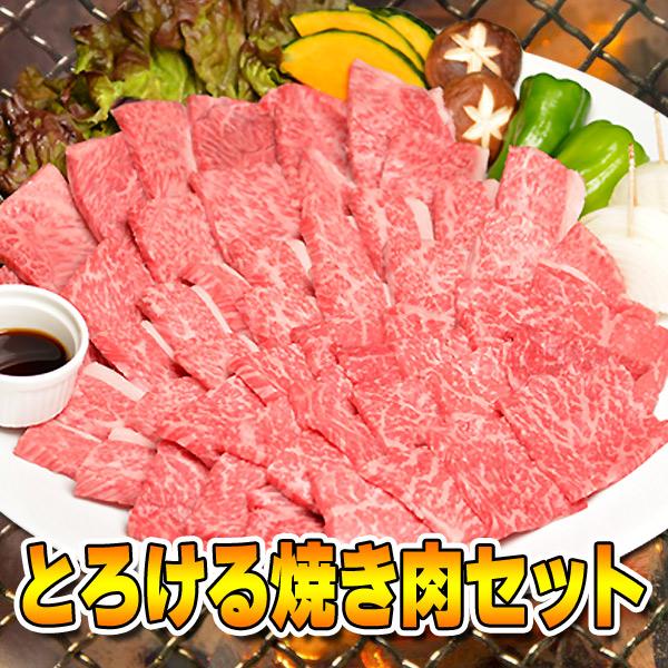 牛肉 黒毛和牛 A5 大和榛原牛 とろける焼き肉セット 松 750g カルビ 250g +極上バラ 250g +霜降り肉 250g 4〜5人前 送料無料