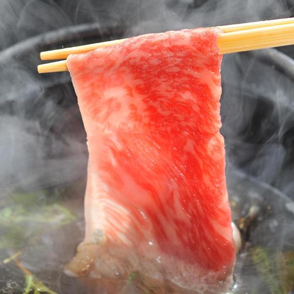 牛肉 切り落とし 黒毛和牛 大和榛原牛 A5 リッチな赤身切り落とし たっぷり 600g  送料無料 冷凍便