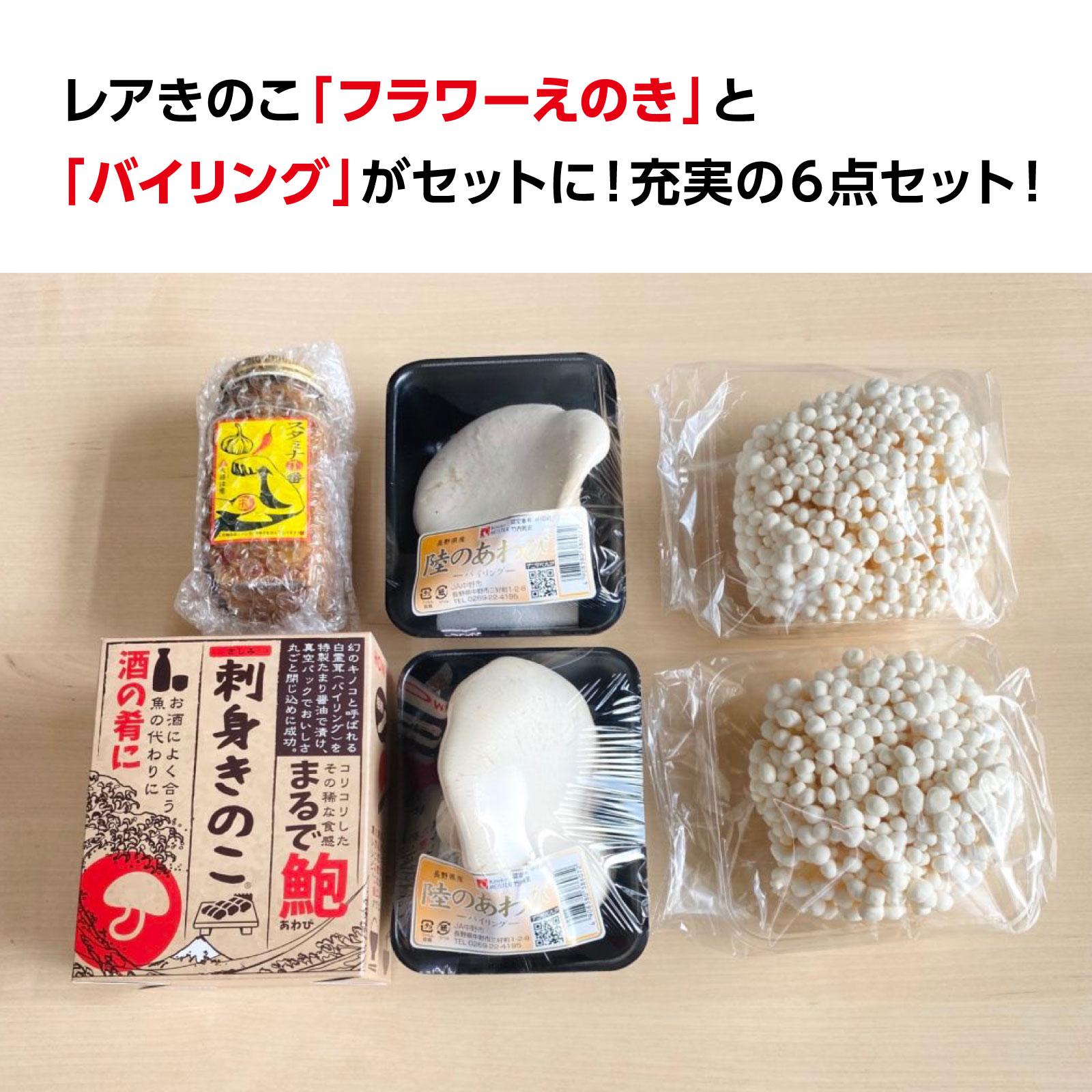 《長野県》竹内きのこ園のあわび茸が入った特選きのこセット