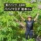 《オンライン収穫体験》 宮崎県パパイア王子の青パパイア