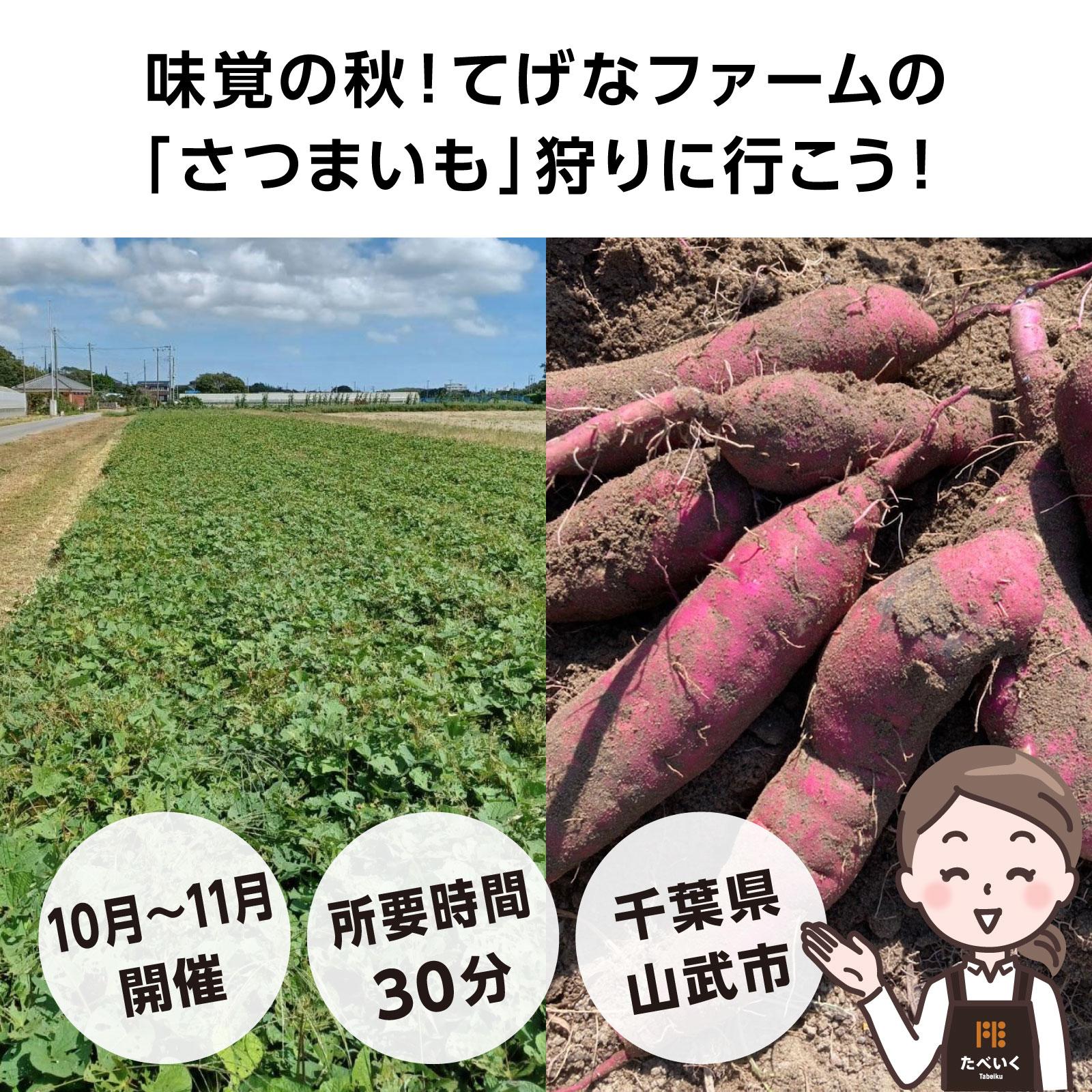 """てげなファームの""""農薬不使用さつまいも""""の収穫体験へ行こう!"""
