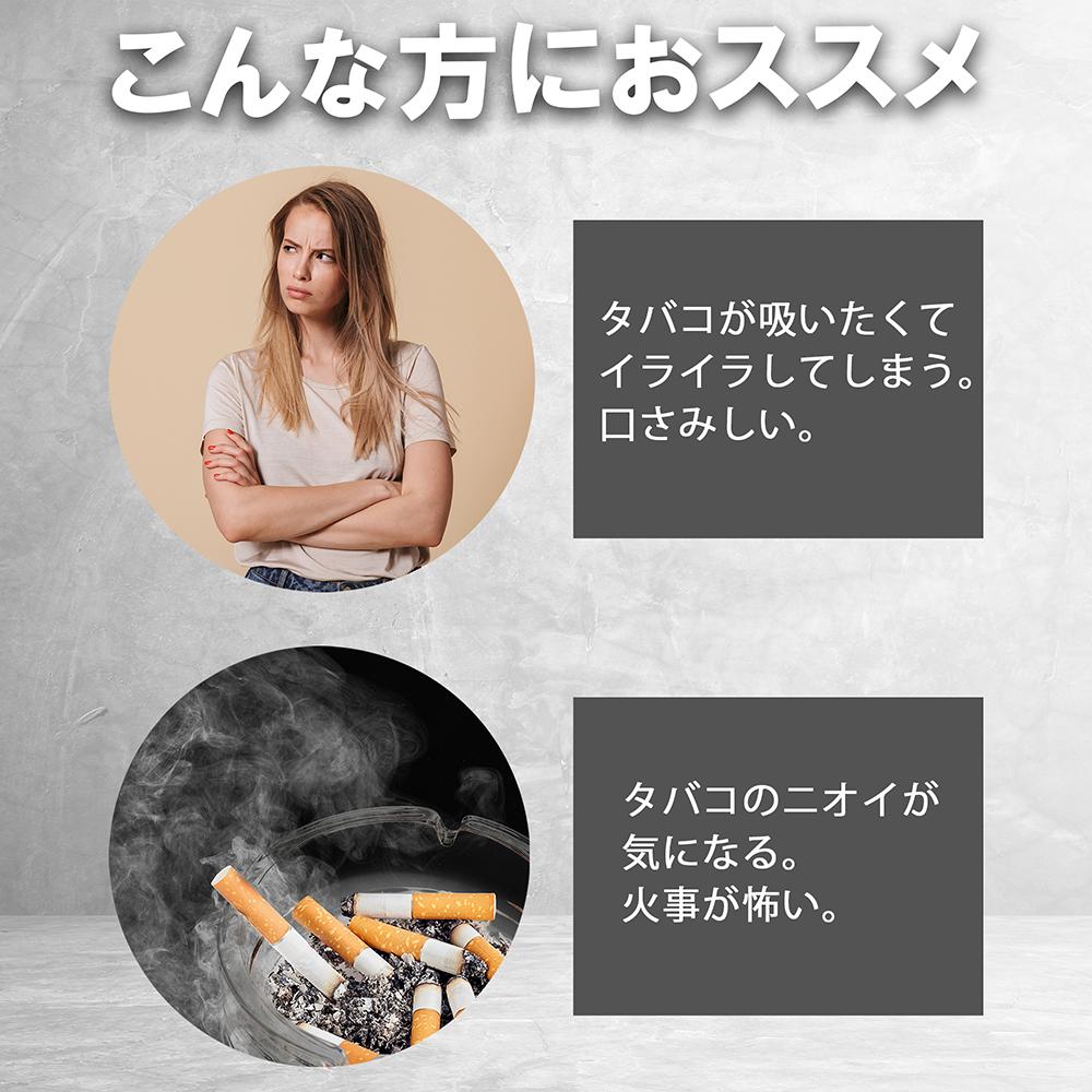 【ブルーベリーメンソール 1箱(20本入り)】 NICONON ニコノン  禁煙後の新しいカタチ。  アイコス互換機 次世代ニコチン0mg加熱式スティック