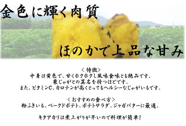 北海道産 北あかり 10㎏ 【送料無料】(一部のエリアを除く)
