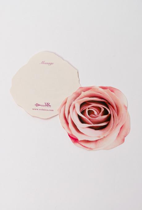 Gift Kit 【Sサイズ】