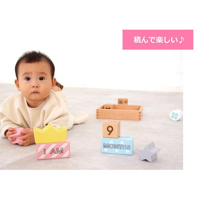 メモリービスケット Memory Biscuits 知育玩具 教育玩具 知育グッズ ブロック遊び 木のおもちゃ 積み木 ウッドブロック