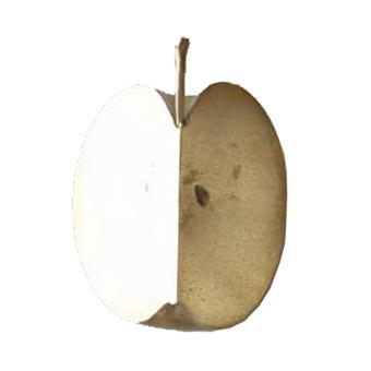 文鎮 おしゃれ ぶんちん ペーパーウェイト かわいい ブックストッパー リンゴ 文鎮 graf グラフ 文房具 林檎 小物 おもしろ プレゼント ギフト 真鍮 cut piece