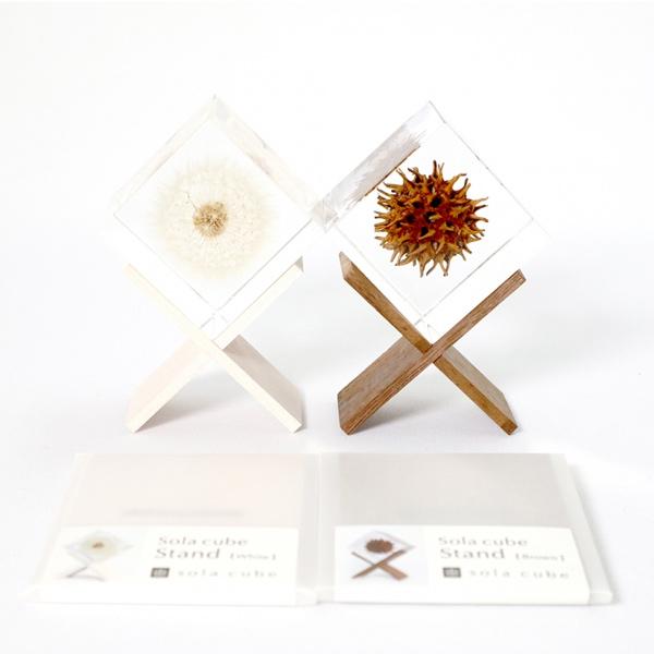 ソラキューブ 専用 スタンド 茶 白 Sola cube 宙 メール便 対応 ウサギノネドコ 立体標本 透明 箱 植物 おしゃれ インテリア 小物