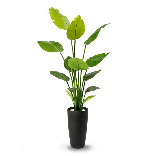 ストレチア フェイク グリーン 枝 造花 GREENPARK 皿付 TPプランター PRGR-1045 エコストーン リバーロック ウッドチップ 陶器 観葉植物 おしゃれ