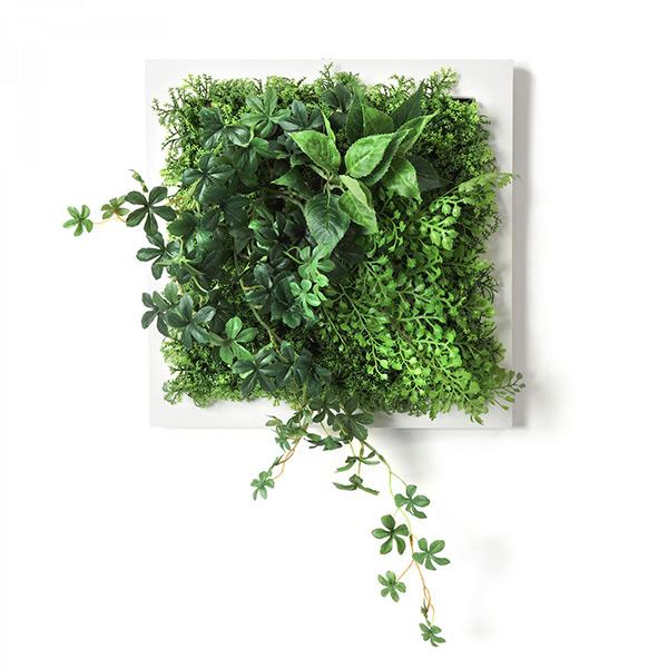 フェイクグリーン 壁掛け 観葉植物 造花 シュガーバイン アジアンタム ホワイトフレーム グリーン スクエア おしゃれ 植物 PRGR-1311F GREENPARK グリーンパーク