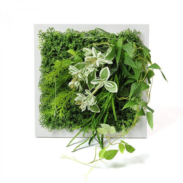 フェイクグリーン 壁掛け 観葉植物 造花 テッセンソウ ハツユキソウ ホワイト フレーム グリーン スクエア おしゃれ 植物 PRGR-1313F GREENPARK グリーンパーク