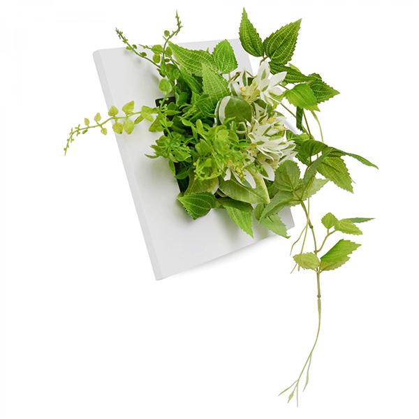 フェイクグリーン 壁掛け ミニ 卓上 造花 観葉植物 テッセンソウ × ボタンファーン ウォールデコS GREENPARK PRGR-1053 インテリア 壁 おしゃれ 白 フレーム