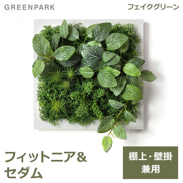 フェイクグリーン 壁掛け 観葉植物 造花 フィットニア セダム ホワイトフレーム グリーン スクエア おしゃれ 植物 PRGR-1314F GREENPARK グリーンパーク