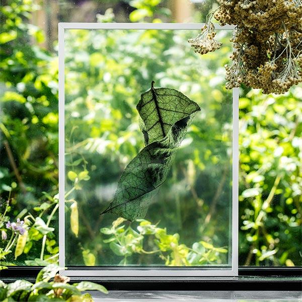 ペーパーコレクティブ Floating Leaves 04 A3 クリア ポスター Paper Collective 08124 透明 透過プリント 葉 北欧 インテリア おしゃれ
