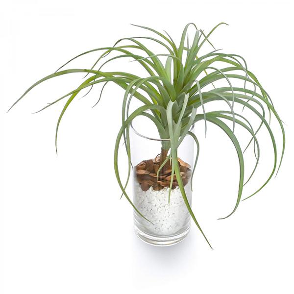 フェイクグリーン チランジア エアプランツ 卓上 造花 観葉植物 テーブルグリーン ガラス シリンダー インテリア おしゃれ GREENPARK PRGR-1235 人気 植物