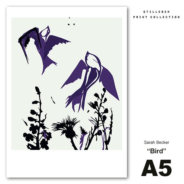 スティルレーベン A5 ポスター 148×210mm Bird 鳥 メール便 対応 Sarah Becker STILLEBEN シンプル デンマーク 北欧 おしゃれ インテリア