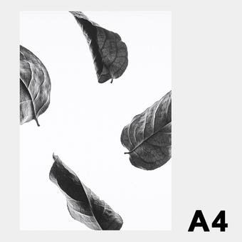 ペーパーコレクティブ Floating Leaves 02 A4 クリア ポスター メール便 対応 Paper Collective 8117 透明 葉 北欧 インテリア おしゃれ