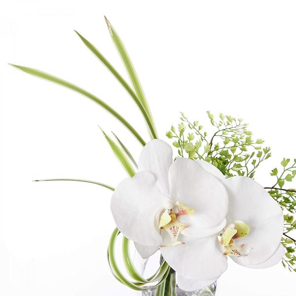 フェイクグリーン ミニ 胡蝶蘭 ドラセナ ウォーターアレンジ 造花 おしゃれ プレゼント ギフト 結婚祝い花束 アレンジメント Sサイズ PRGF-0068 アーティフィシャルフラワー