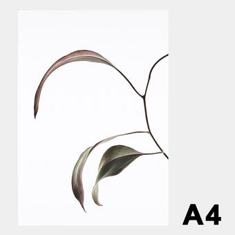 ペーパーコレクティブ Floating Leaves 07 A4 クリア ポスター メール便 対応 Paper Collective 8132 透明 葉 北欧 インテリア おしゃれ
