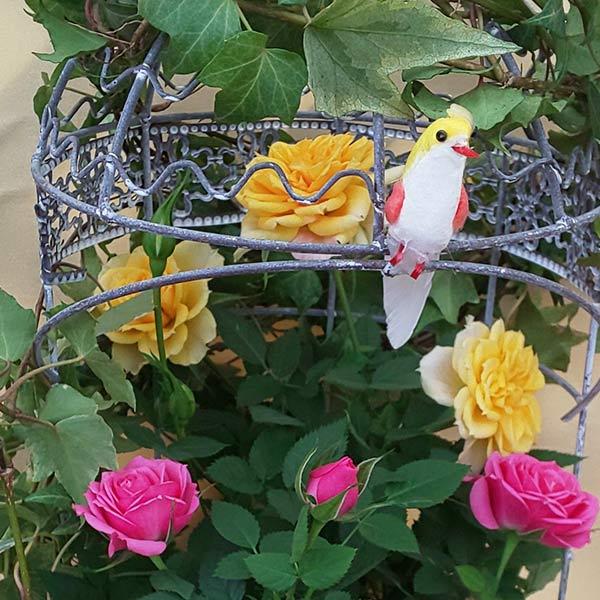 母の日 早割 送料無料 プレゼント ギフト 花 鉢植え ミニバラ バラ ローズ 薔薇 ばら 生花 寄せ植え バードケージ 鳥かご 籠 H50 No.49 おしゃれ かわいい 人気