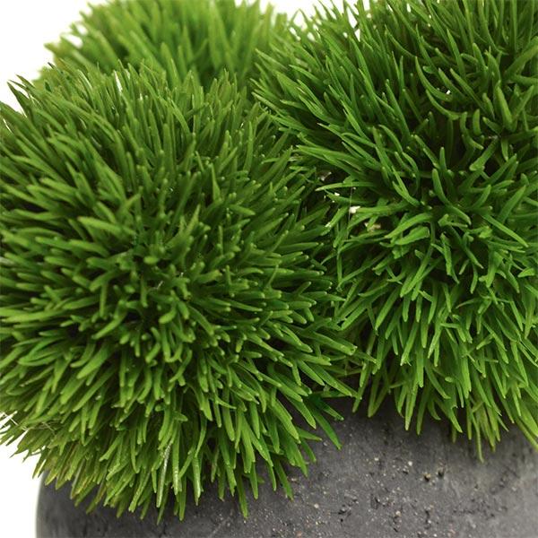 盆栽 マリモ 檜 炭 ボール 黒皿 CUPBON フェイクグリーン 造花 ミニ サイズ PRGR-1097 消臭 調湿 効果 ヒノキ てまり草 脱臭 和 モダン 炭ボール 和室 丸い 檜炭