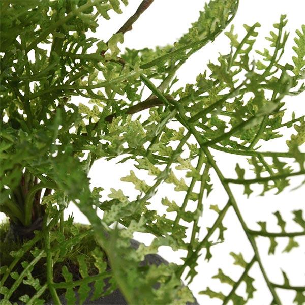 盆栽 シノブ シダ植物 檜 炭 ボール 黒皿 CUPBON フェイクグリーン 造花 ミニ サイズ PRGR-1098 消臭 調湿 効果 ヒノキ 脱臭 和 モダン 炭ボール 和室 丸い 檜炭