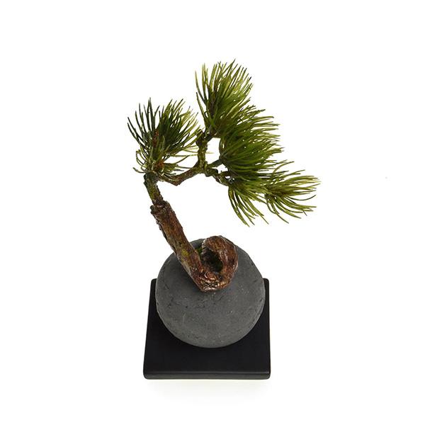 盆栽 松 吹き流し 檜 炭 ボール 黒皿 CUPBON フェイクグリーン 造花 ミニ サイズ PRGR-1101 消臭 調湿 効果 ヒノキ 脱臭 和 モダン 炭ボール 和室 丸い 檜炭