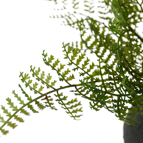 盆栽 桜 の 葉 寄せ植え 檜 炭 ボール マリモ シダ 黒皿 CUPBON フェイクグリーン 造花 ミニ サイズ PRGR-1163 消臭 調湿 効果 ヒノキ 脱臭 和 モダン 炭ボール