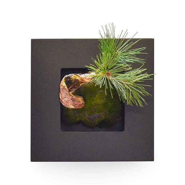 盆栽 松 三本 フェイクグリーン 壁掛け 人工 観葉植物 造花 スタンド付 CUPBON PRGR-0910 和室 植物 モダン 北欧 インテリア 癒し 装飾 長寿 アレンジメント