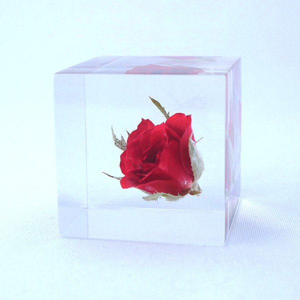 バラ 4cm Sola cube 宙 ソラキューブ ウサギノネドコ 薔薇 ローズ 花 赤 インテリア プレゼント ギフト 祝い クリア 透明 おしゃれ