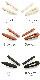 マットカラーヘアクリップ(2本セット)H7376