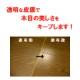 ニャンわんくす(犬猫床用ワックス/滑り止め) 2L