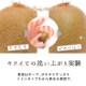 【12月上旬発売】 ボディーミトン ハニカムスポンジ ハニカム構造 蜂の巣 六角型の3D構造 TPU ボディーケア ボディ洗浄 角質ケア クレンジング お風呂 バス用品 プレゼント