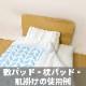 ●吸水速乾 枕パッド BL