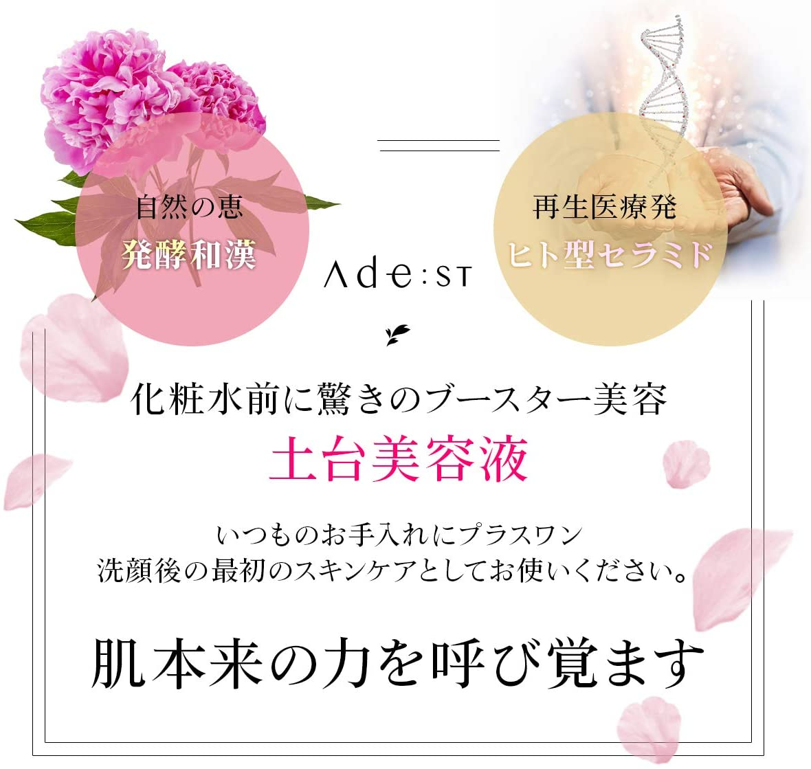 Ade:ST concentrate SERUM 新型ビタミン誘導体APPS 配合美容液
