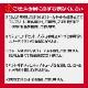 【今だけソールカバープレゼント】【安心組み立て発送】 スノースクート SNOWSCOOT コンプリート 完成車 選べるボード 70L FLASH ナナマル フラッシュ AP-2 C-1 GEIN ウィンタースポーツ ジックジャパン JykK Japan SNOW BIKE TECH スノーバイクテック