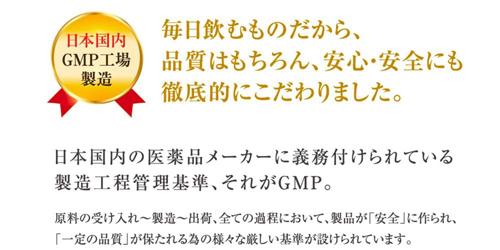 【1袋】ナマサプリ ヘム鉄 ピロリン酸鉄 30日分