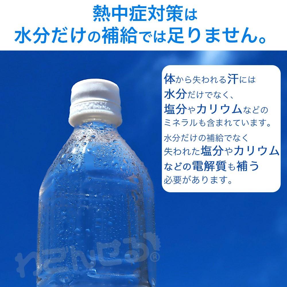 タブレット 塩分 補給 飴 熱中症 対策 エブリサポート 30粒 2袋セット