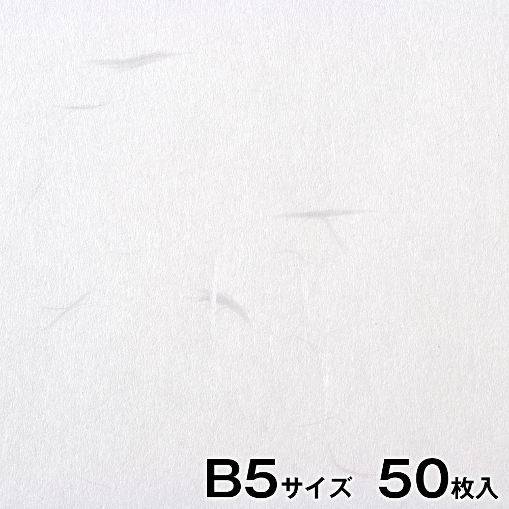 プリンター和紙 大直 大礼紙 白 B5サイズ50枚入 インクジェット・レーザー対応