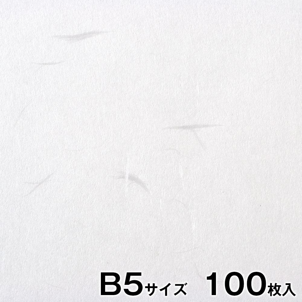 プリンター和紙 大直 徳用大礼紙 白 B5サイズ100枚入 インクジェット・レーザー対応