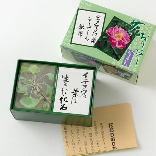 奥野かるた店 花おりおりかるた 朝日新聞の人気コラム「花おりおり」から生まれたかるた Flower karuta game