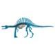 DINOSAUR恐竜骨格工作キット スピノサウルス・ブルー ダンボールでつくる恐竜骨格 のりもはさみも使わずに組み立てられるペーパークラフト Cardboard craft kit, Dinosaur