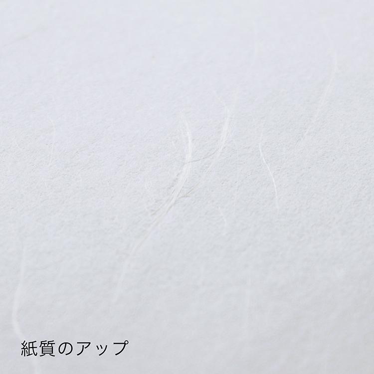 プリンター和紙 大直 雲竜紙 A4サイズ100枚入 インクジェット・レーザー対応 Japanese paper for printer