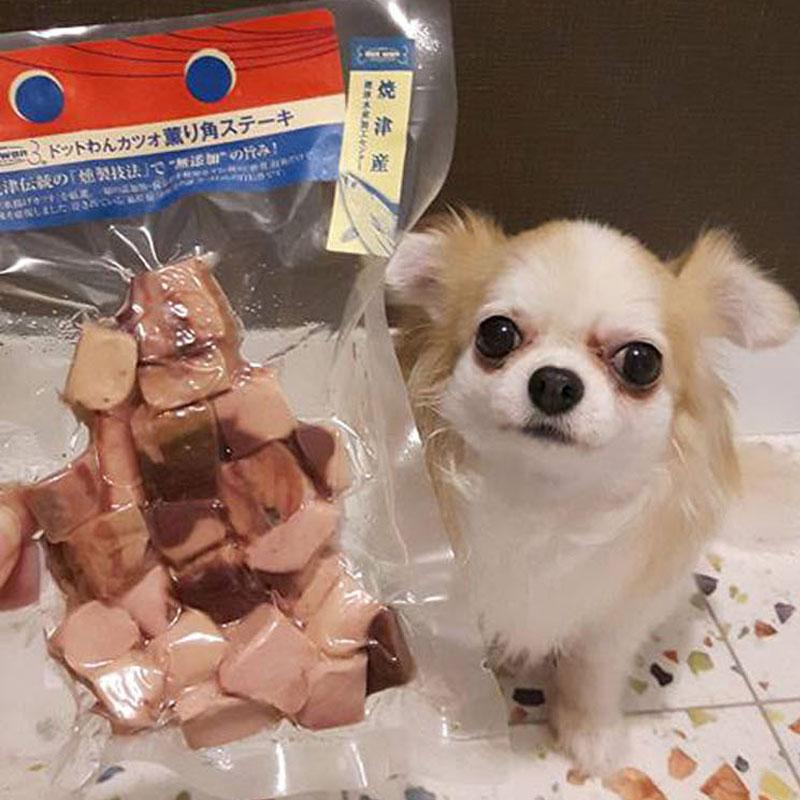 ドットわん カツオ薫り角ステーキ