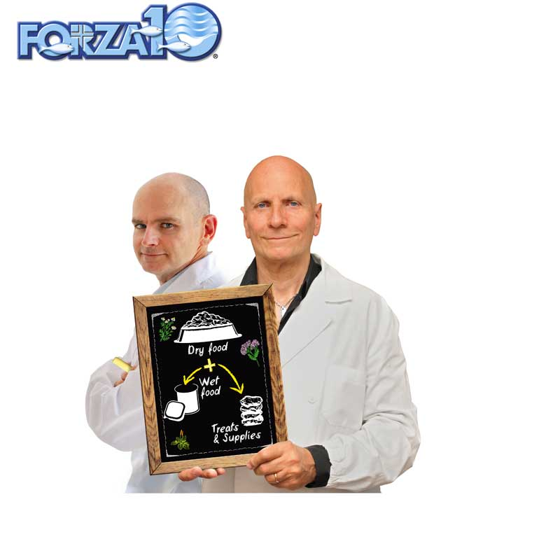 FORZA10(フォルツァディエチ)デルモ(皮膚)・アクティブ 小粒