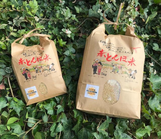 中島さんのはざかけ米・新米(岐阜県産・無農薬無化学肥料玄米)【2サイズあり】