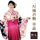二尺袖着物 着物単品 卒業式 コスプレ 仮装 女性用 HL(アッシュエル)