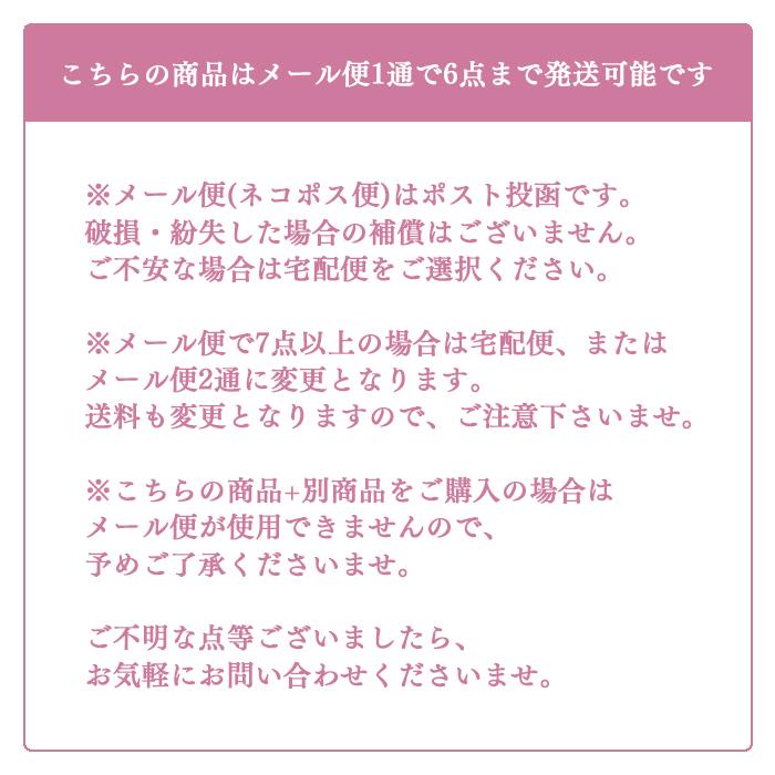 ちょいおきMASKCASE マスクケース 銀抗菌 日本製 全6柄 ケース マスク入れ