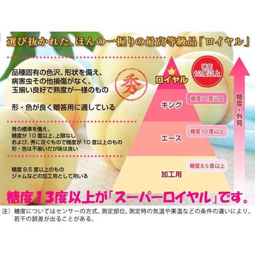 【30セット限定予約受付中】糖度13度以上!清水白桃スーパーロイヤル 約1.4kg(4〜6玉) (販売終了7/20予定)